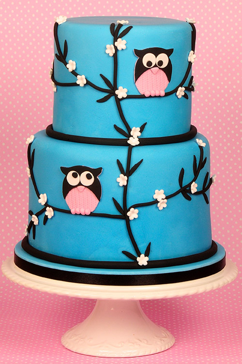 Birthday cake with owls designed by Janet Dobie from JD Cake Designs